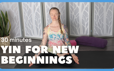 Yin for New Beginnings – 30 Minutes