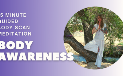 Body Awareness | 15 Minute Guided Body Scan Meditation