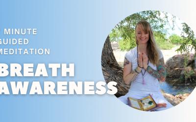 Breathe Awareness | 7 Minute Guided Meditation