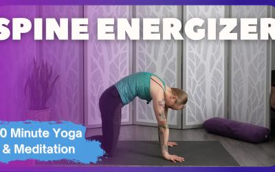 Spine Energizer | 20 Minute Yoga & Meditation